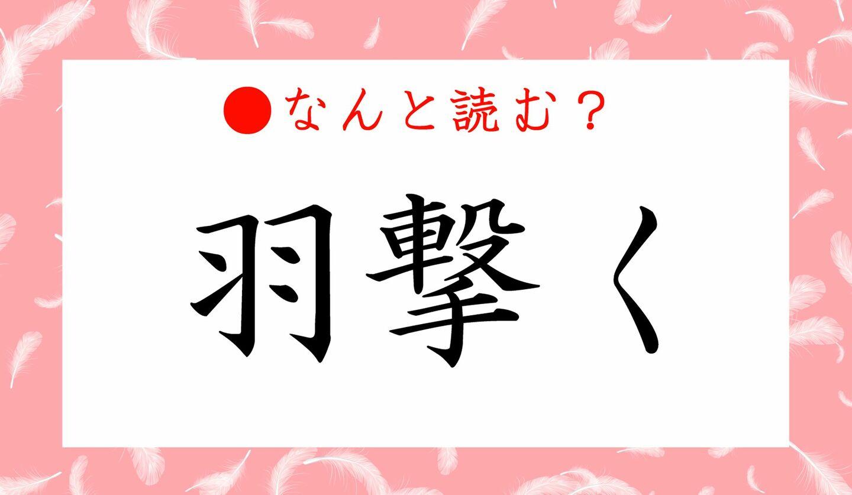 日本語クイズ 出題画像 難読漢字 「羽撃く」なんと読む?