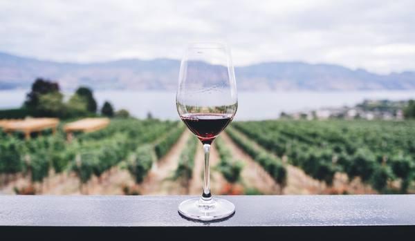 高級ワイン16選|高級ワインおすすめの有名銘柄、通販で買える高級ワイン、高級ワイングラスなど高級ワインのまとめ