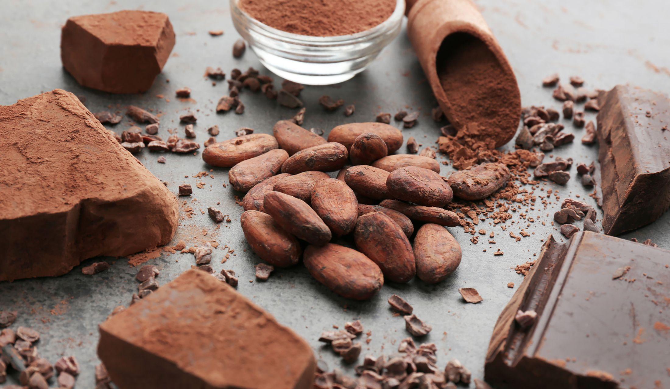 テーブルの上にある、カカオ、カカオニブ、カカオマス、カカオパウダー、チョコレート