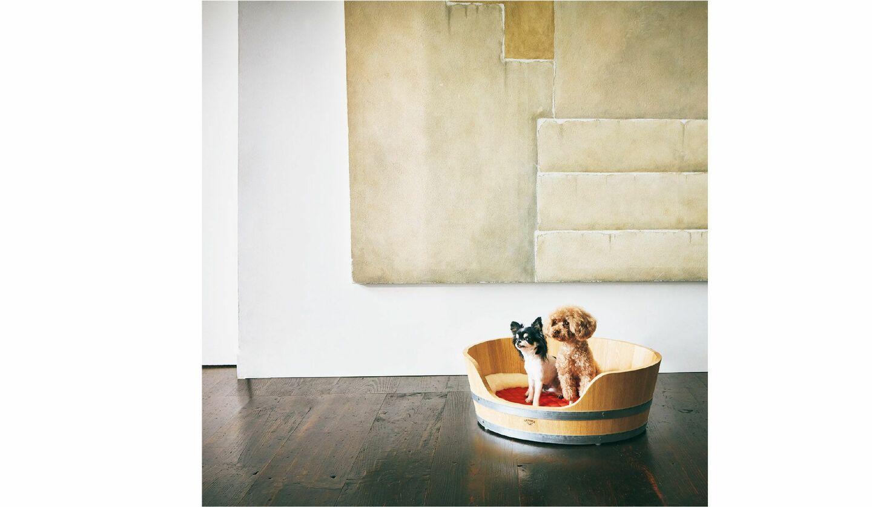 エルメスのドッグバスケットと大政絢さんの飼い犬のなちゅとココ