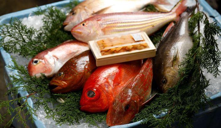 市場特選鮮魚10,000円セットの写真