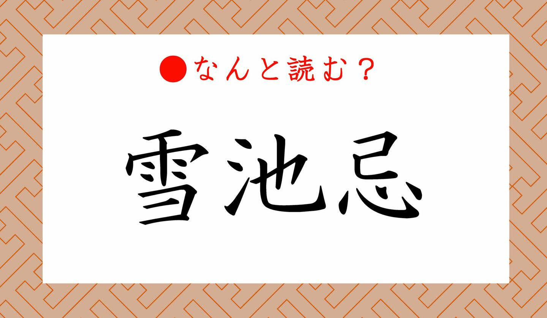 日本語クイズ 出題画像 難読漢字 「雪池忌」なんと読む?
