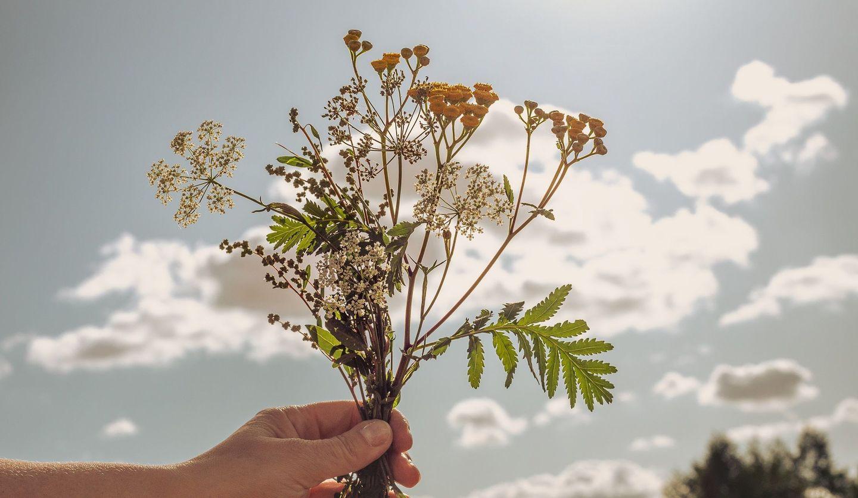 花束を手にして空に向けている図