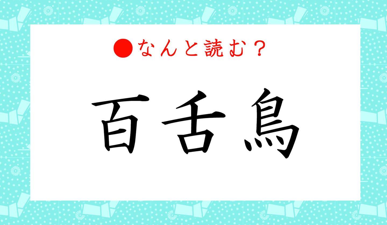 日本語クイズ 出題画像 難読漢字 「百舌鳥」なんと読む?
