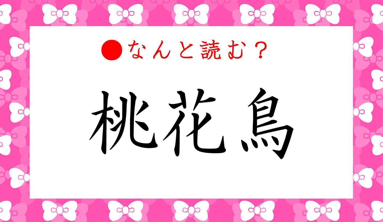 日本語クイズ 出題画像 難読漢字 「桃花鳥」なんと読む?