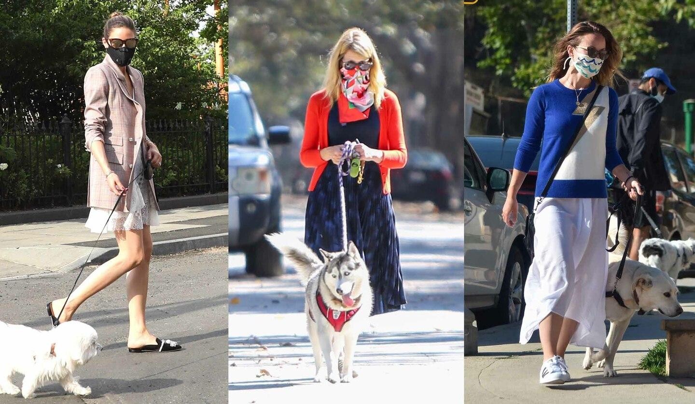 おしゃれなマスクをして愛犬の散歩をしたいたオリビア・パレルモ、ローラ・ダーン、オリビア・ワイルド