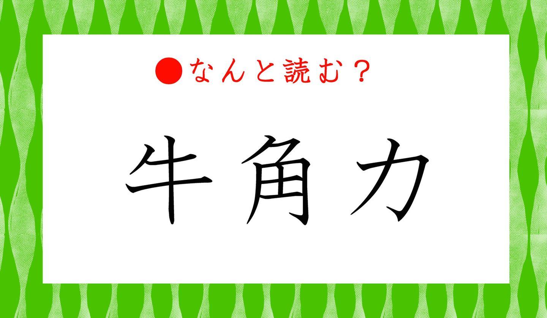 日本語クイズ 出題画像 難読漢字 「牛角力」なんと読む?