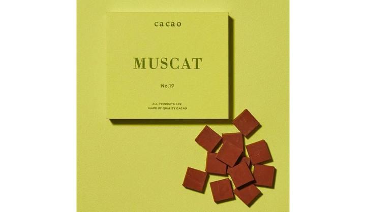 G20大阪サミットで各国大統領の機内手土産に選ばれた、鎌倉発のアロマ生チョコ専門店「ca ca o」の「高級・生チョコレート」に注目
