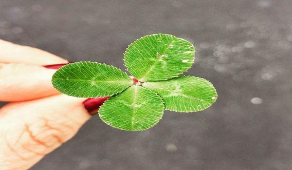 意識を変えるだけでお金が増えていく!「最強運の人生」を手に入れる5つの方法