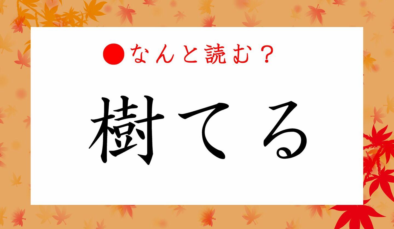 日本語クイズ 出題画像 難読漢字 「樹てる」なんと読む?