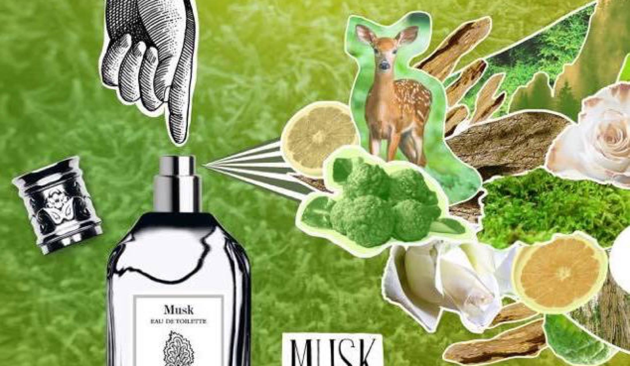 エトロの「メタモルフォージ」をイメージさせる香水のイラスト
