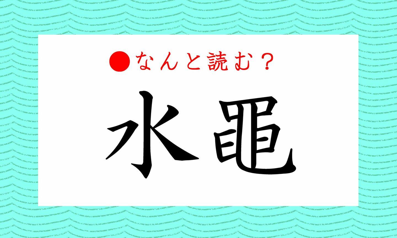 日本語クイズ 出題画像 難読漢字 「水黽」なんと読む?