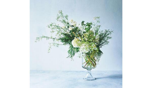 【新連載スタート】大政 絢さんの「花上手」になりたい!|初夏の家時間に幸せをもたらすお花とは?