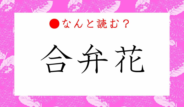 日本語クイズ 出題画像 難読漢字 「合弁花」なんと読む?