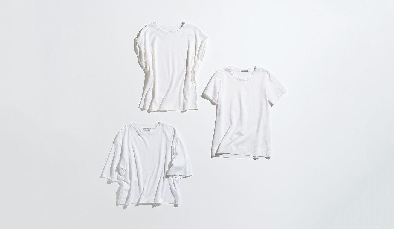インドゥエリス、Vince、Theory luxeの白Tシャツ