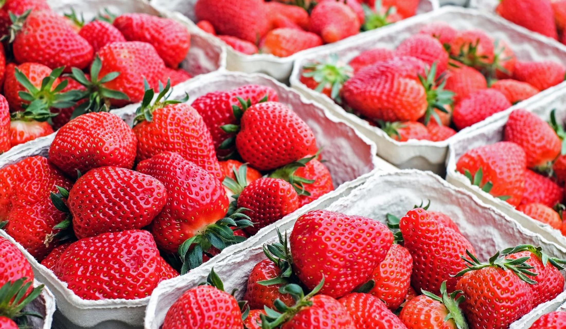 おいしいイチゴの条件