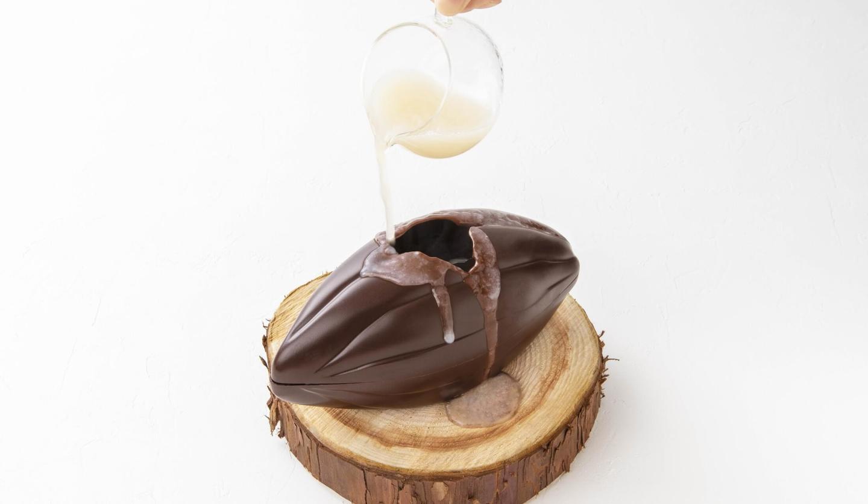 キットカット ショコラトリーのカカオフルーツ デセール