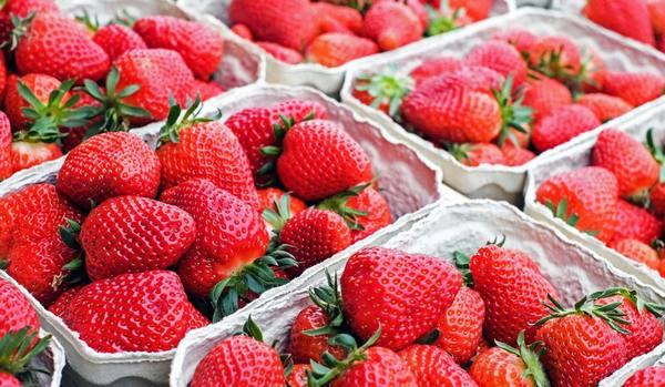 いつも通り食べると損かも!最高においしいイチゴを食べるための「4つの条件」