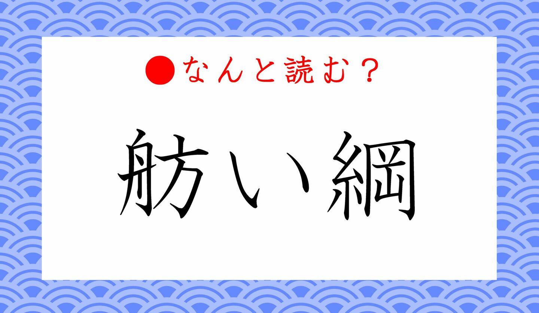 日本語クイズ 出題画像 難読漢字 「舫い綱」なんと読む?