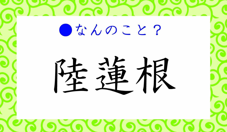 日本語クイズ 出題画像 難読漢字 「陸蓮根」なんのこと?