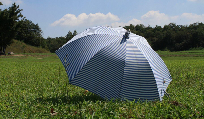 草原に置かれた日傘