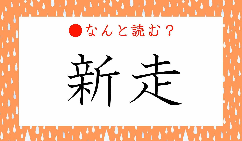 日本語クイズ 出題画像 難読漢字 「新走」なんと読む?