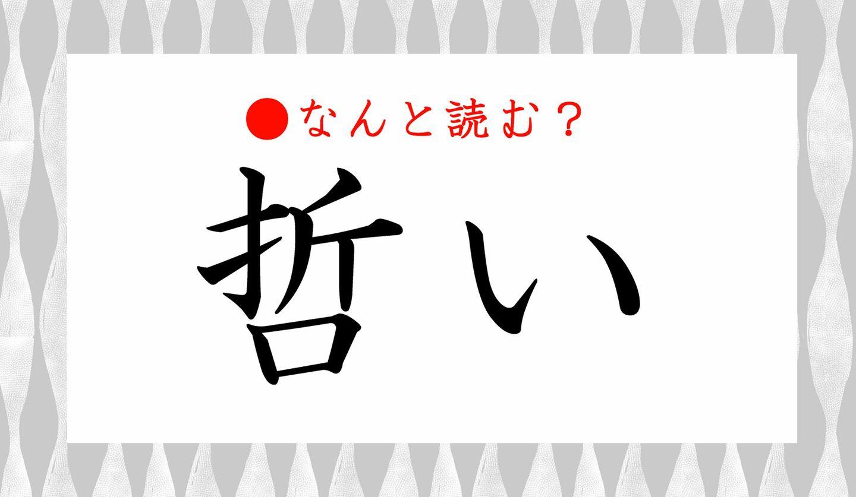日本語クイズ 出題画像 難読漢字 「哲い」なんと読む?