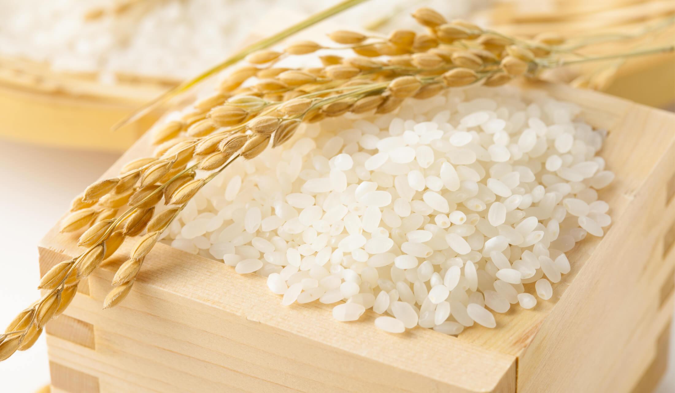 木の一合升に米がたっぷり入れられ、その上に稲穂がかかっている