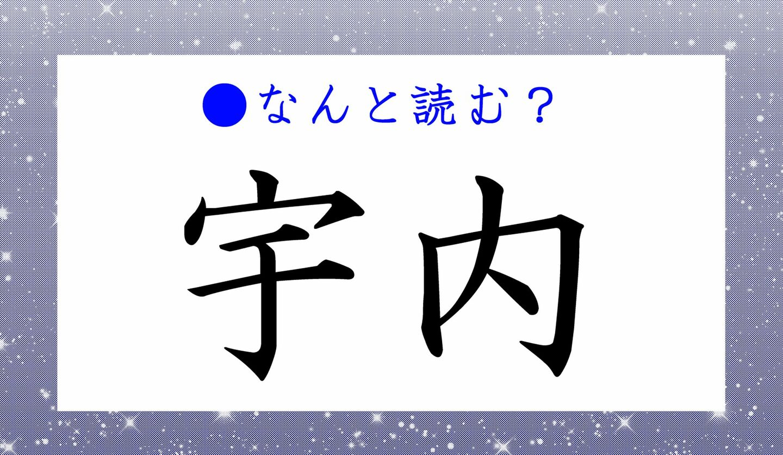 日本語クイズ 出題画像 難読漢字 「宇内」なんと読む?