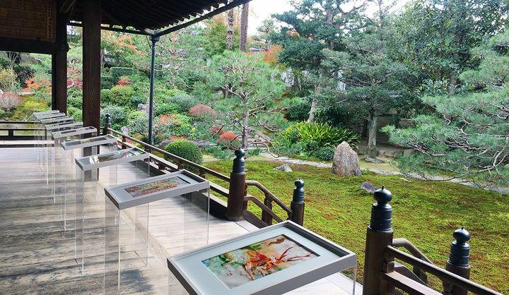 京都最古の禅寺、建仁寺塔頭 両足院で開催している、清川あさみさんによる話題の書籍「千年後の百人一首」の原画展
