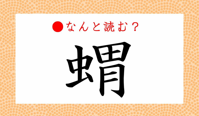 日本語クイズ 出題画像 難読漢字 「蝟」なんと読む?