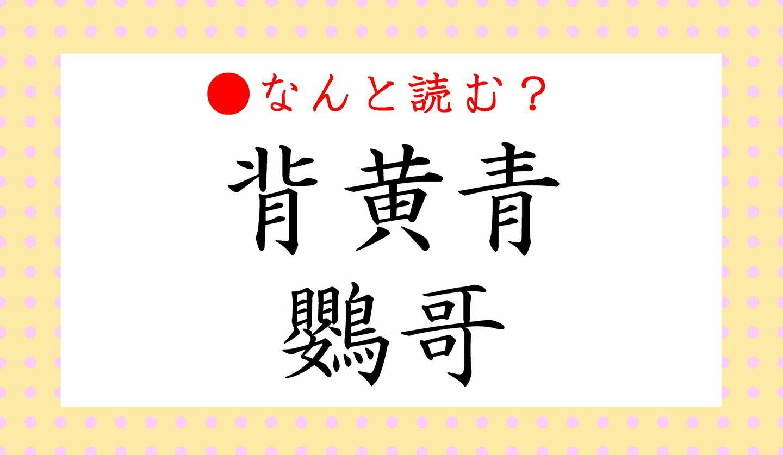 日本語クイズ 出題画像 難読漢字 「背黄青鸚哥」なんと読む?
