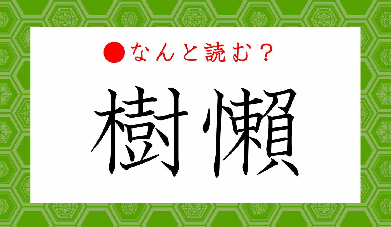 日本語クイズ 出題画像 難読漢字 「樹懶」なんと読む?