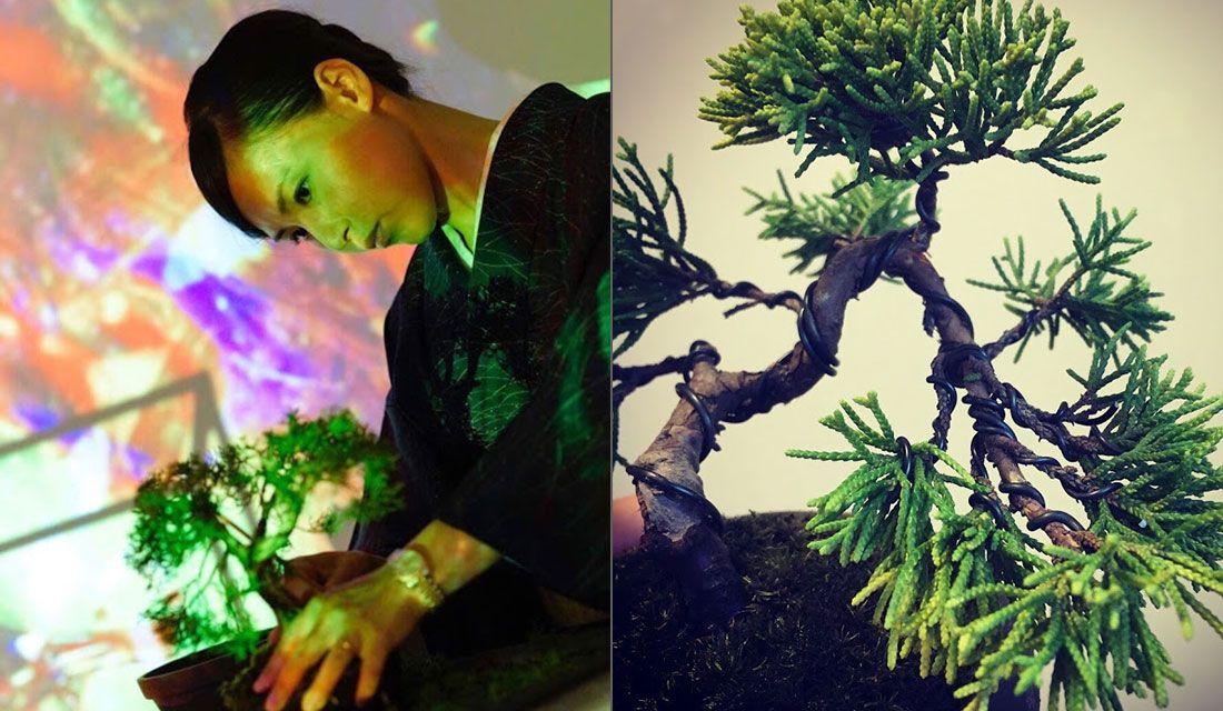 樹弥沙さんと盆栽