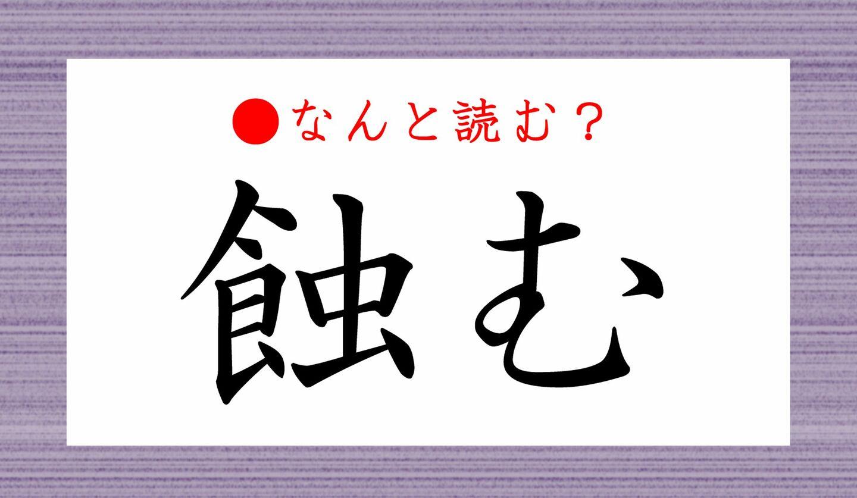 日本語クイズ 出題画像 難読漢字 「蝕む」なんと読む?