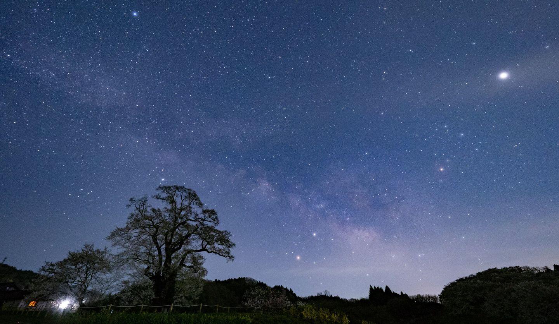 月夜に天の川が流れ、無数の星が輝いている星空写真。手前には大きな木の影がある。