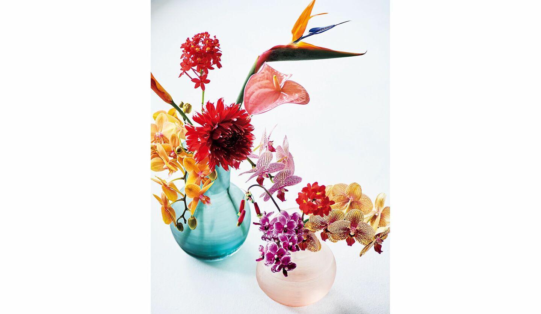 色とりどりのランを活けた花瓶