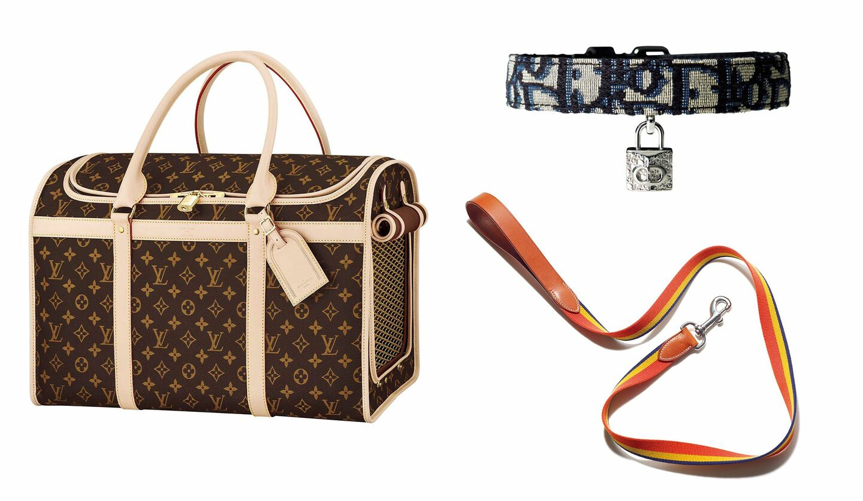 ルイヴィトンのキャリーバッグとディオールの首輪、エルメスの犬用リード