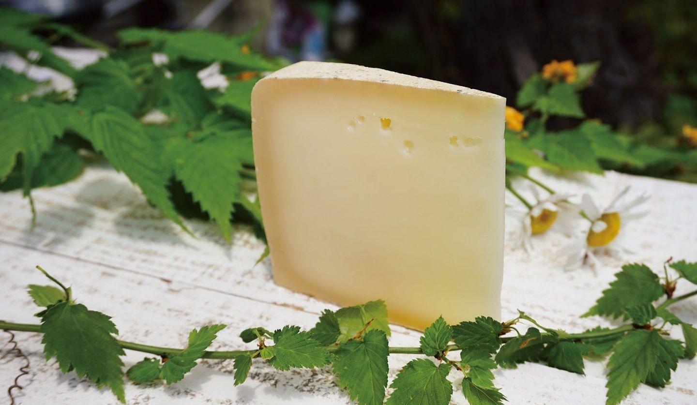 人気の国産チーズ