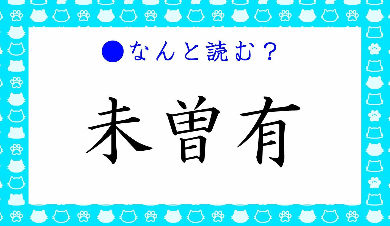 日本語クイズ 出題画像「どら猫」 どんな猫?